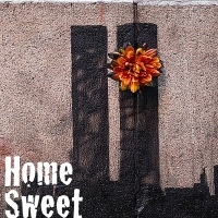 Robert Cuccioli, James Rana and More to Star in Virtual Presentation of HOME SWEET HO Photo