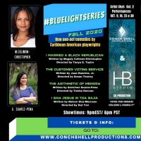 Conch Shell Productions and HB Studio Announce #BlueLightSeries Fall 2020 Finalist Pl Photo