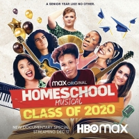 BWW Blog: Laura Benanti's HOMESCHOOL MUSICAL: CLASS OF 2020 on HBO Max is Really Some Photo