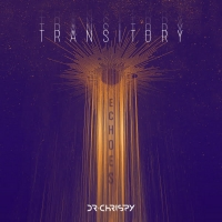 TRANSITORY ECHOES Introduces Six Vibrant New Remixes Photo