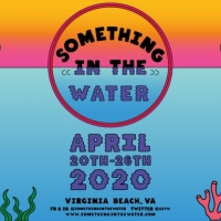 Post Malone, Foo Fighters, & More to Perform at Pharrell Williams' Something In The Water Festival
