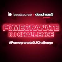 Deadmau5 And Beatsource Partner For #PomegranateDJChallenge