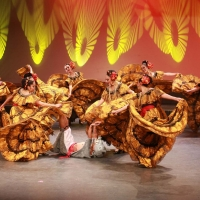 Take A Journey Into Mexican Cultures At The Majestic