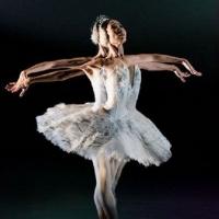 La Compañía Nacional De Danza Reprograma La Gala De Ballet En El Palacio De Bellas Artes