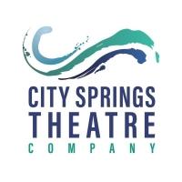 City Springs Theatre Company Announces Leadership Change Photo
