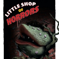 ACT Of CT Kicks Off Season with LITTLE SHOP OF HORRORS Photo