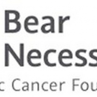 Bear Necessities Pediatric Cancer Foundation Brings Celebrities And Chicago Personali Photo