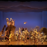 THE LION KING to Stream Opening Number Exclusively on TikTok Photo