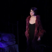 VIDEO: Watch Barrett Wilbert Weed Sing 'Maybe This Time' From Signature Theatre's CAB Photo