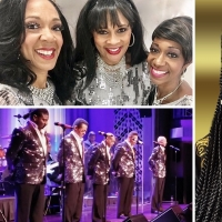 BWW Feature: MOTOR CITY NIGHTS at M Pavilion Stage At The M Resort Spa And Casino