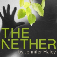 Jennifer Haley's Play THE NETHER Kicks off The Dragon Theatre's 20th Season Photo