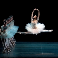 American Ballet Theatre Announces Casting and Programming for ABT's March 2020 Perfor Photo