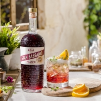 Sip Italy with Fine Choices - APERITIVO and DIGESTIVO Along with Recipes to Enjoy Photo