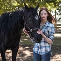 Disney+ Announces Film Adaptation of BLACK BEAUTY With Kate Winslet Photo