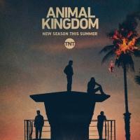 TNT Renews Hit Series ANIMAL KINGDOM for a Sixth and Final Season Photo