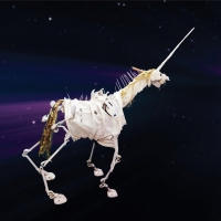 Dixon Place Announces In-Person and Online Puppetry Premiere of UNICORN AFTERLIFE by Justi Photo