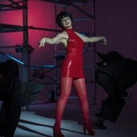 BWW Interview: Krysta Rodriguez Talks Starring as Liza Minnelli in HALSTON, Working With E Photo
