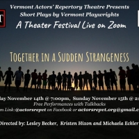 Vermont Actors' Repertory Theatre Presents A: ZOOM PLAY FEST! Photo
