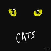 BWW Review: CATS at Rochester Broadway Theatre League Photo