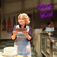 BWW Review: THE CAKE: Two Brides, One Conundrum for North Carolina Baker
