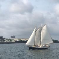 South Street Seaport Museum Announces Docking Of Schooner Apollonia Photo