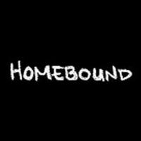 BWW Video: Episode Three of Round House Theatre's Webseries Homebound