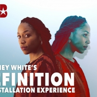 Whitney White's DEFINITION: AN INSTALLATION EXPERIENCE to be Presented in June Photo