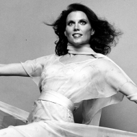 THE JOY IS IN THE WORK, el documental sobre Ann Reinking, se estrena hoy en Youtube Photo