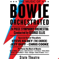 David Bowie Tribute WE CAN BE HEROES Comes to State Theatre Photo