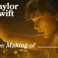 VIDEO: Taylor Swift Reveals Every Hidden Easter Egg Within 'Cardigan' Music Video Photo