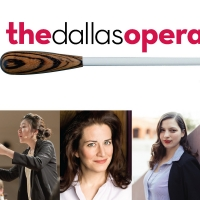 The Dallas Opera's Hart Institute Goes Virtual for 2021; Participants Announced Photo