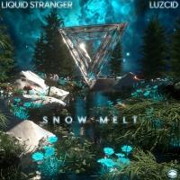 Liquid Stranger Makes SSKWAN Debut With 'Snow Melt' Photo