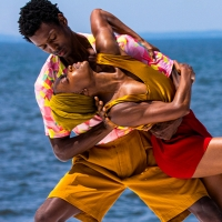 Virtual Fire Island Dance Festival to Stream Friday, July 17 Photo