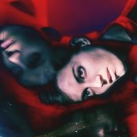 Salami Rose Joe Louis Announces Remix LP 'Chapters of Zdenka' Photo