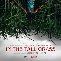 VIDEO: Watch the Trailer for Netflix's IN THE TALL GRASS Photo