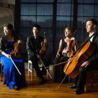 Princeton Symphony Orchestra Announces Spring Chamber Concert Line-Up Photo