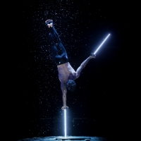 BWW Feature: COACH BACHMANNS HIDDEN HANDSTAND THEATRE at Imhere Aerial Dance Studio Photo