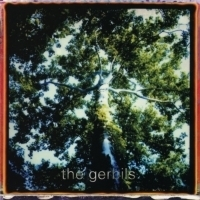 Elephant 6 Collective Label Returns With Reissue Of Debut Album From The Gerbils Photo