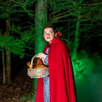 BWW Review: INTO THE WOODS at Red Curtain Theatre Get Their Wishes Photo