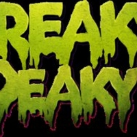 Disco Donnie Presents and Freaky Deaky Music Festival Announce Charity Initiatives Photo