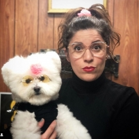 HBO Max Greenlights Dog Grooming Competition Series HOT DOG Photo