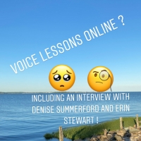 BWW Blog: Voice Lessons Online? How Can I Do That? Photo