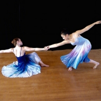 North Shore Civic Ballet's Holiday Auction Launches November 15 Photo