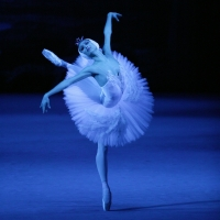 The Bolshoi Ballet's Production of SWAN LAKE Will Be Broadcast at The Ridgefield Play Photo