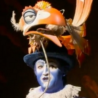 VIDEO: Meet THE LION KING Tour's Zazu, Jürgen Hooper Photo