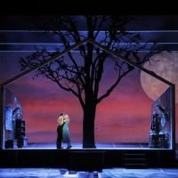 BWW Feature: Virtual Opera Streaming This Week 3/9 Photo