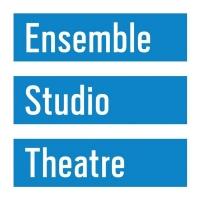 Ensemble Studio Theatre Will Postpone Programming Due to COVID-19 Photo