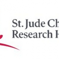 Jude Children's Research Hospital to Host #GiveThanks Immersive Pop Up Experience