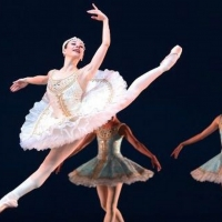 Dutch National Ballet Presents Livestream Spring Special On Easter Monday Photo