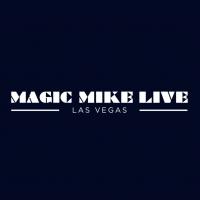 MAGIC MIKE LIVE! Sets Sights on the Vegas Strip Photo